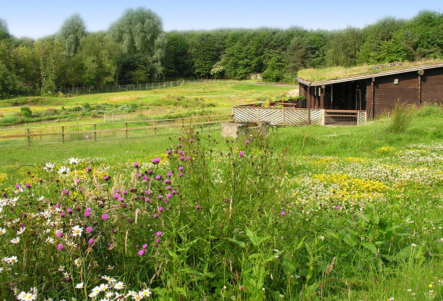 Washington Wetland Centre
