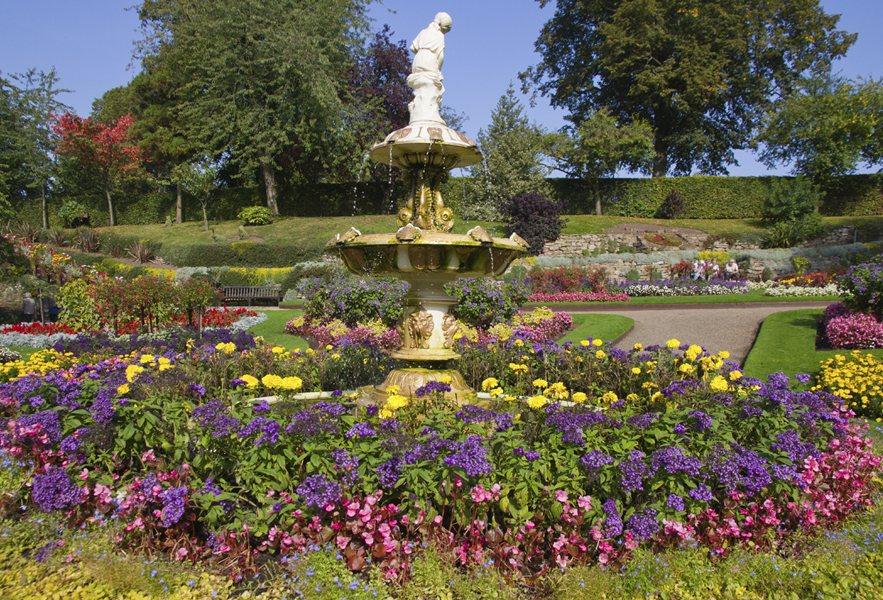 Shrewsbury flower displays