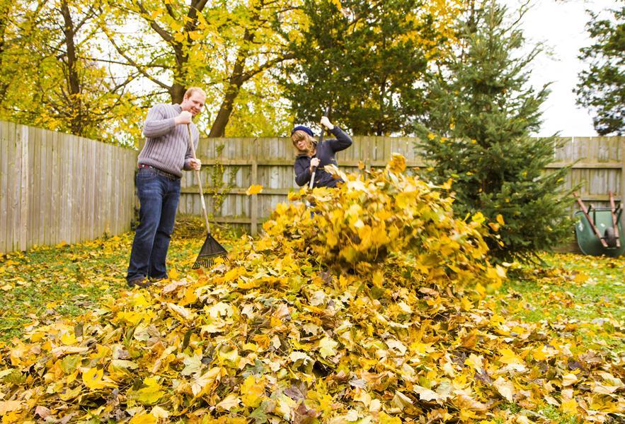 Autumn at Sutton Chase