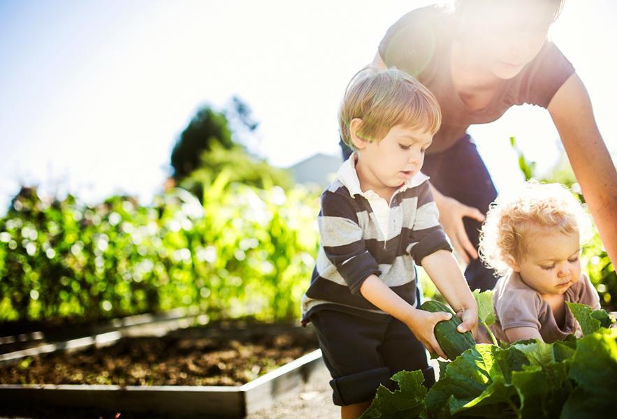 Gardening with Children Malbank Waters
