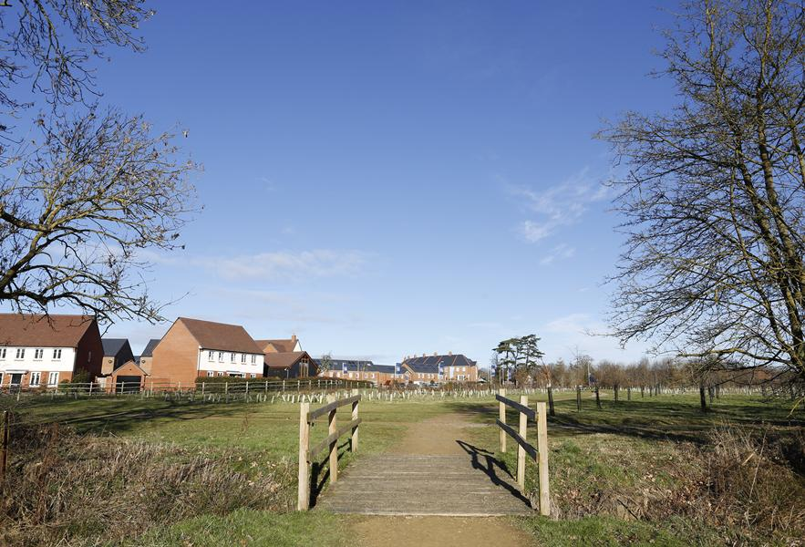 Road to Buckhurst Meadows
