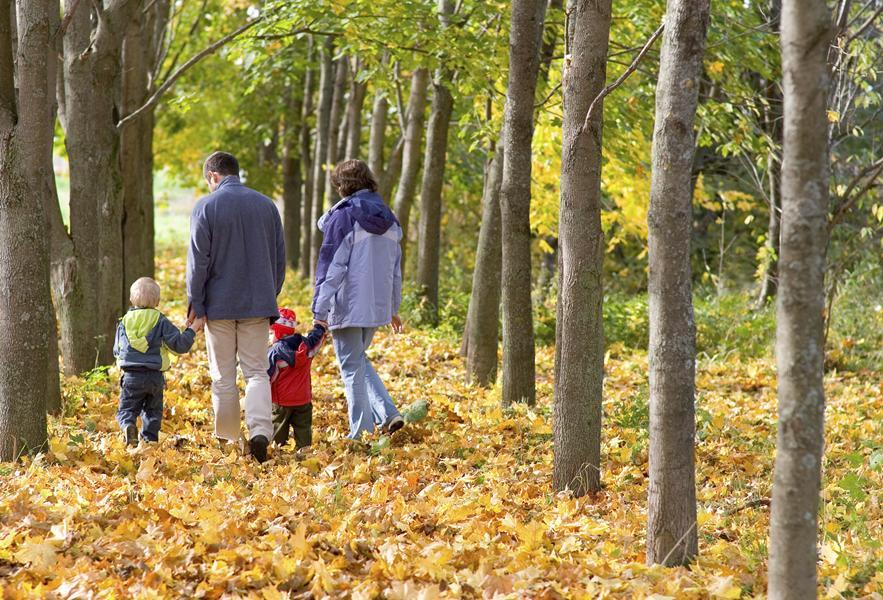 Autumnal lifestyle