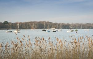 Chichester+Harbour