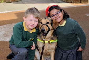 Guide Dogs at Chestnut Grange