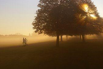 runners at newbury racecourse